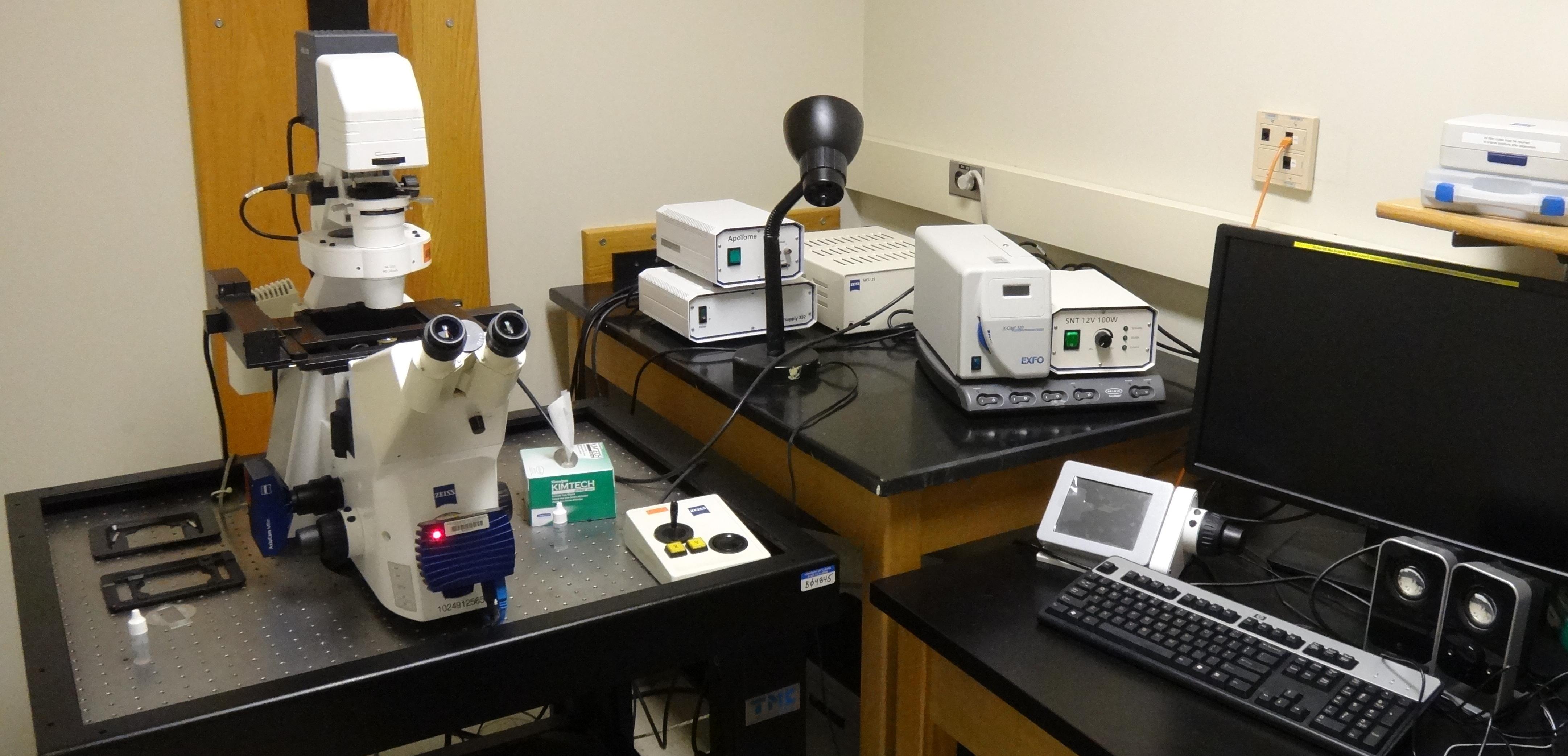 Fluorescence Microscope 2020